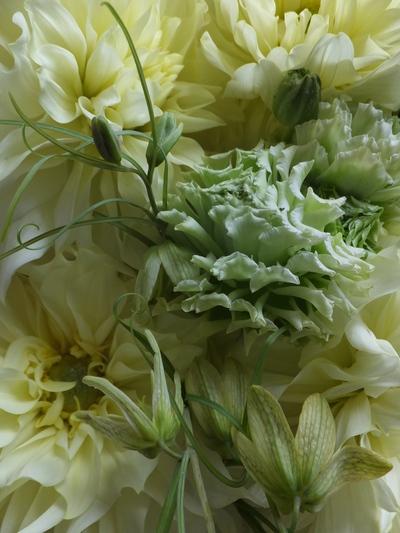 オークリーフ(卒業式の花束)_f0049672_16394922.jpg