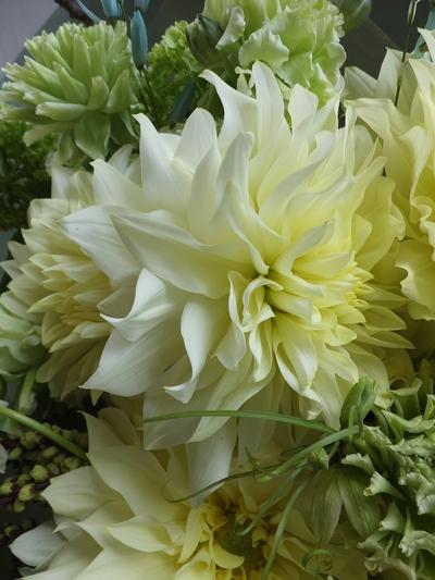 オークリーフ(卒業式の花束)_f0049672_16395777.jpg