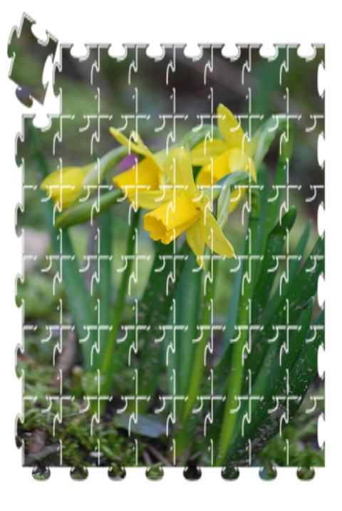 黄色~~_b0189573_12192342.jpg