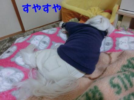 b0193480_20123387.jpg
