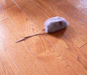 ぶるぶるマウス ホロ編_a0333195_11531397.png