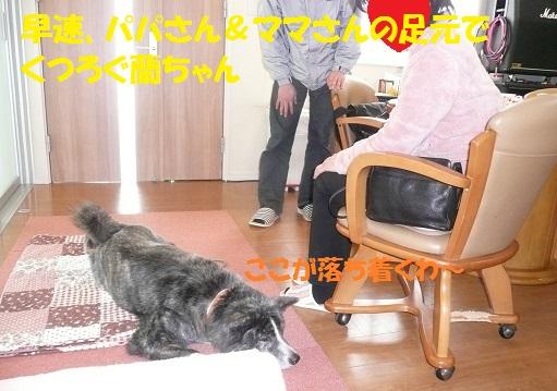 f0121712_13215492.jpg