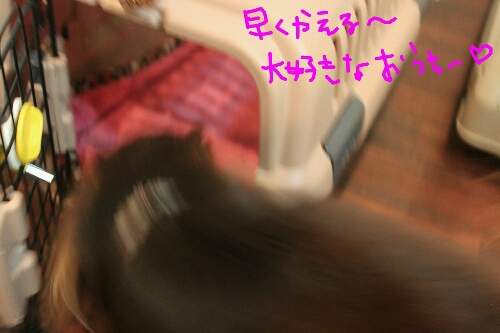 憧れる!_b0130018_1540446.jpg