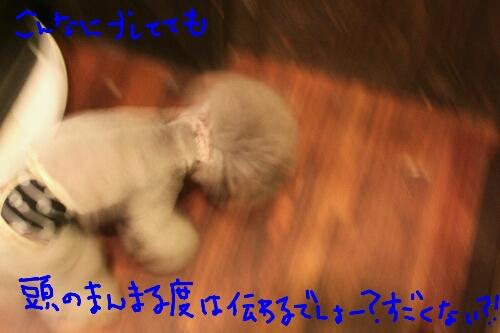 憧れる!_b0130018_16211759.jpg