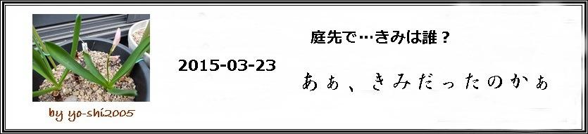 e0033229_18271946.jpg