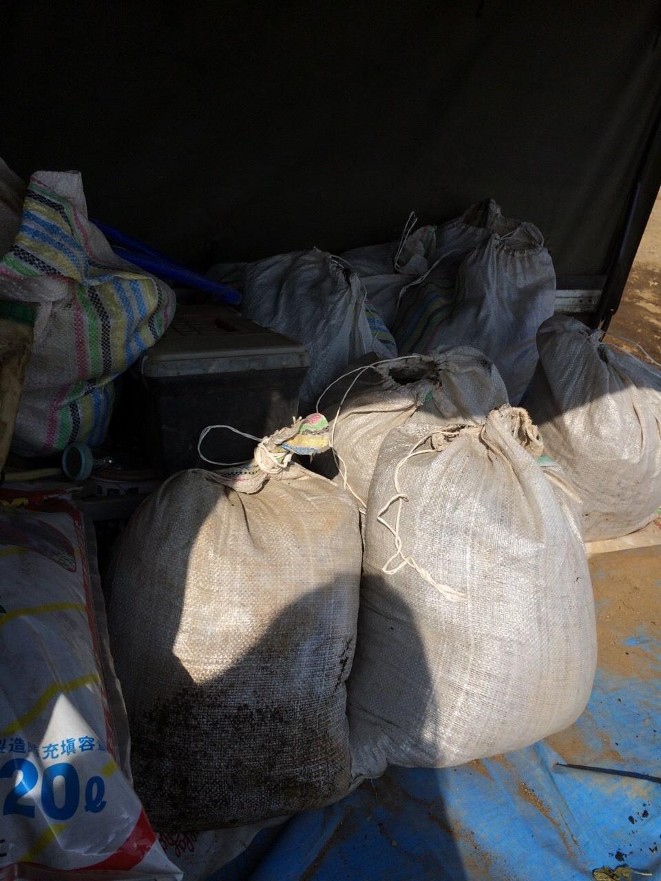 今日は ズッキーニ&トマト&ナス&パプリカの畝の堆肥を運び込みます _c0222448_12351739.jpg