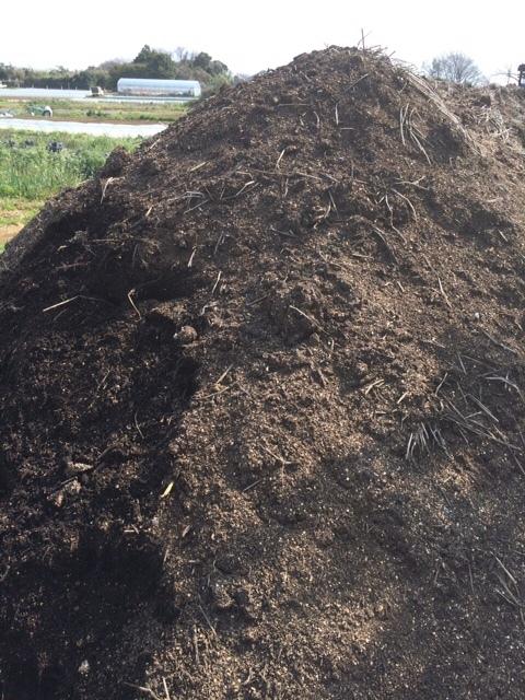 今日は ズッキーニ&トマト&ナス&パプリカの畝の堆肥を運び込みます _c0222448_12373231.jpg