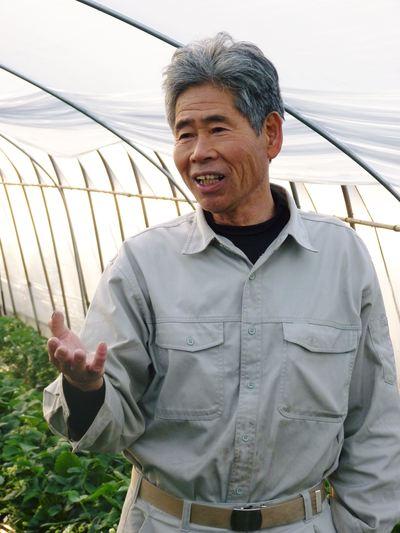 完熟紅ほっぺ 美味さを求めた完熟イチゴと安全を追求した減農薬へのこだわり_a0254656_19353575.jpg
