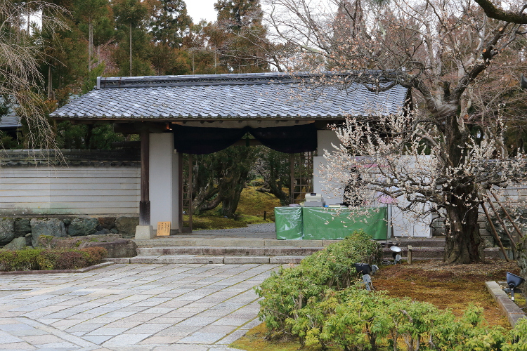 しょうざん庭園_e0051888_616239.jpg
