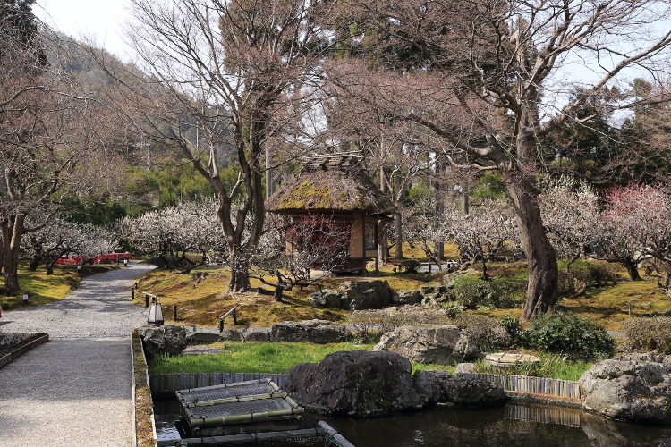 しょうざん庭園_e0051888_6165178.jpg