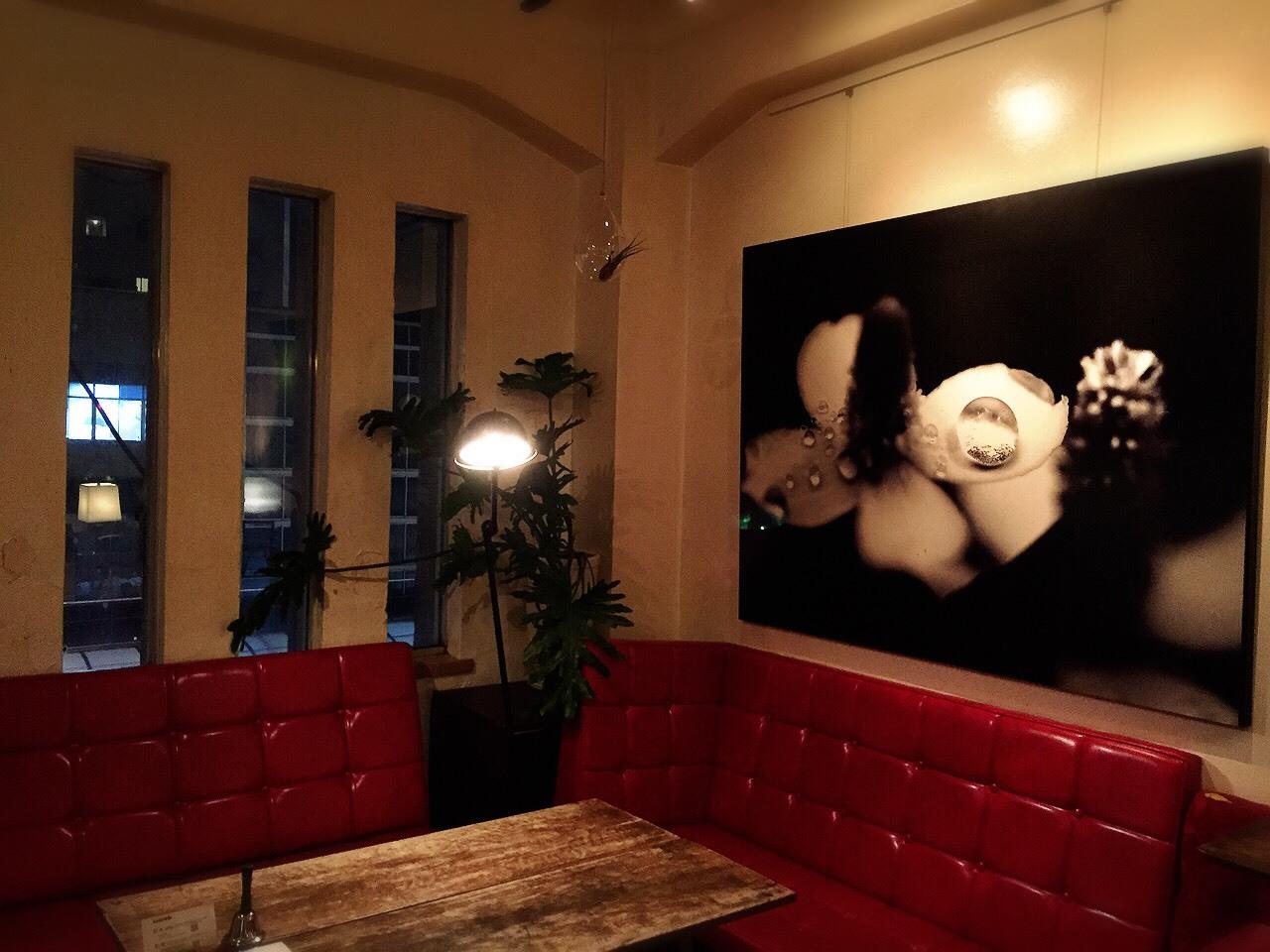 カプト メデュエサ &  Hanging Bubble Terrarium Teardr_e0115904_10483697.jpg
