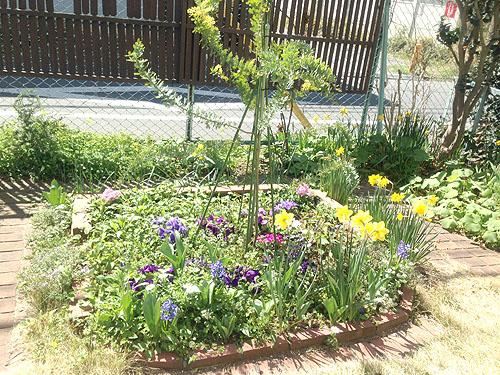 3月24日の庭。春だね_e0026053_112094.jpg