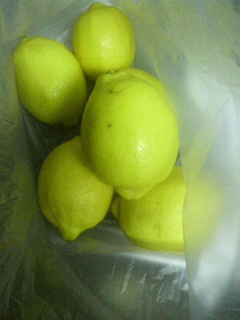 「檸檬」_e0063268_2011087.jpg
