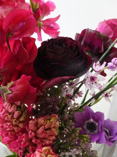 オークリーフ(個性的な花たち)_f0049672_1871495.jpg