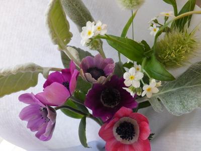 オークリーフ(個性的な花たち)_f0049672_1872186.jpg
