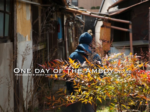 One day of the Amboy No56_d0160378_14182059.jpg