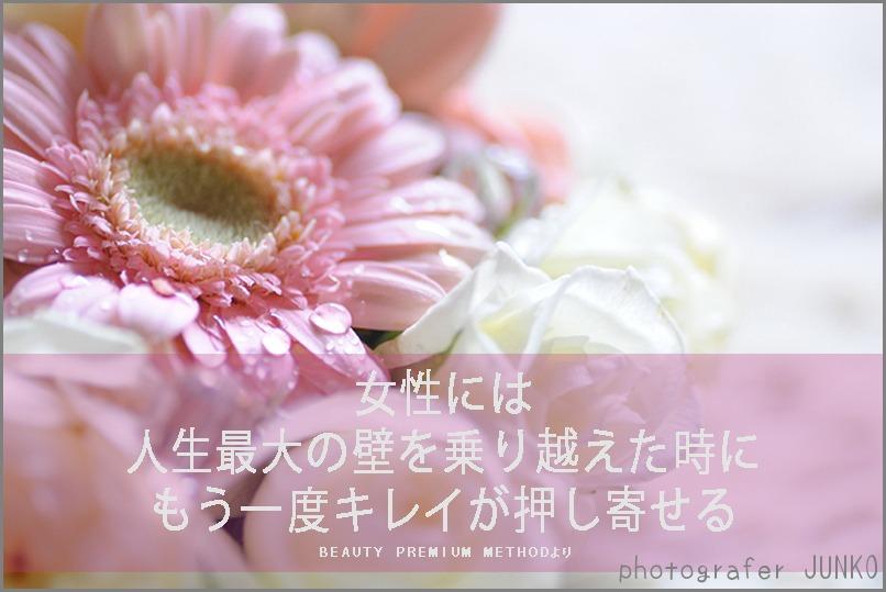 f0215487_17585367.jpg