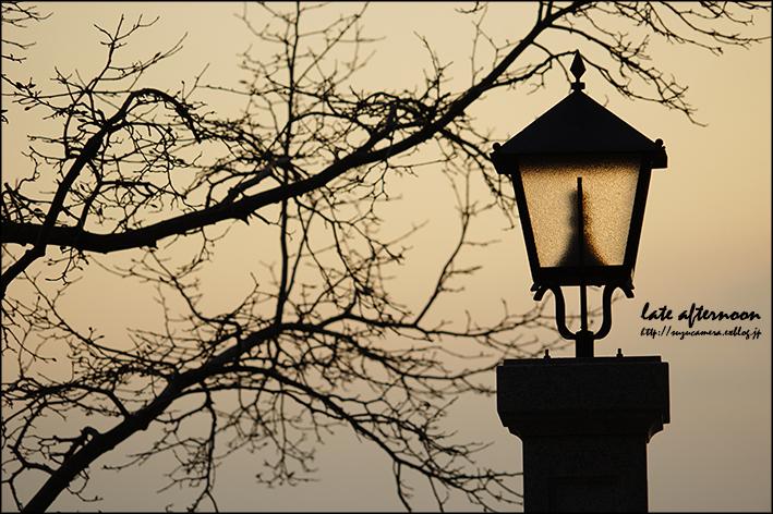 昼と夜の長さ_f0100215_050097.jpg