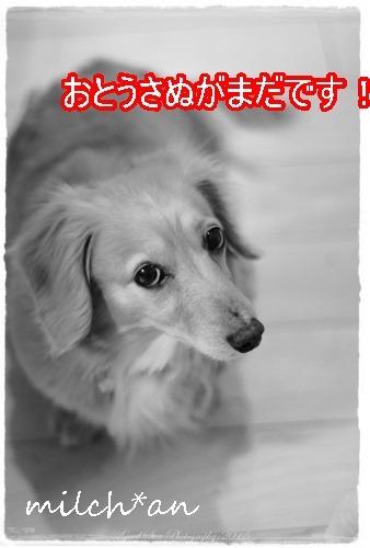 b0115642_21594638.jpg
