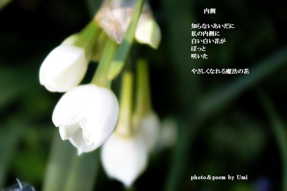 f0351844_10545438.jpg