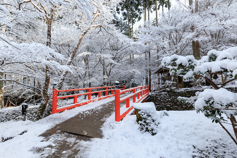 三千院の雪景色(後編)_f0155048_23114955.jpg
