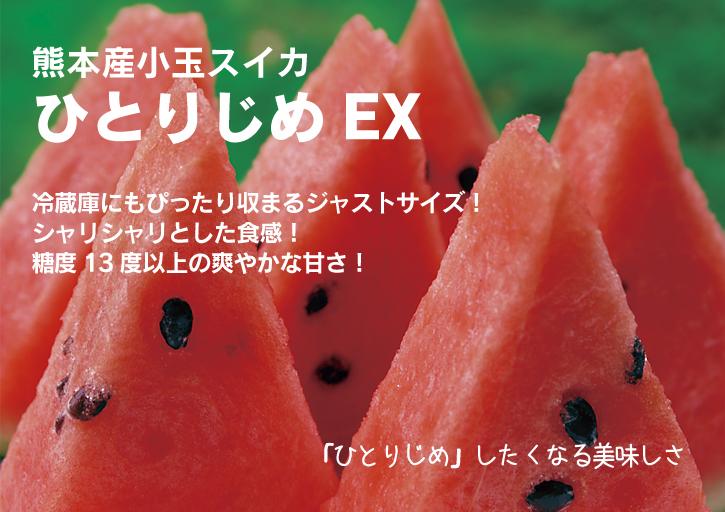 夢スイカ 小玉スイカ「ひとりじめEX」 本日初出荷!!_a0254656_1722273.jpg