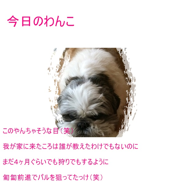 b0124693_20321621.jpg