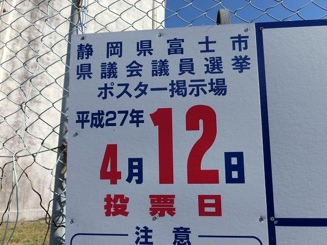 立派な枝垂れ桜と県議選のポスター看板_f0141310_7365657.jpg