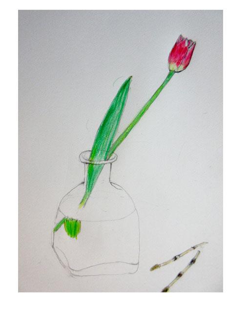 春の花・小学生クラス_f0211514_2042388.jpg
