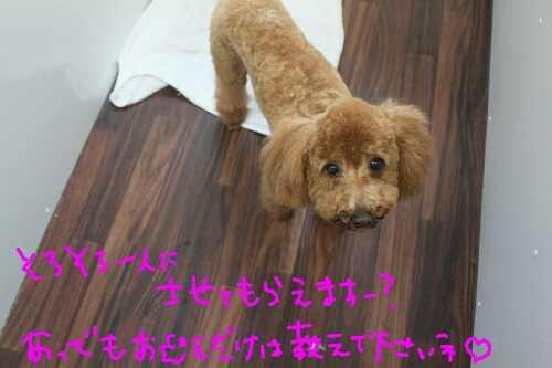 朝から…_b0130018_22563936.jpg