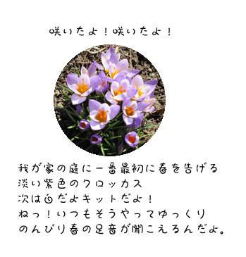 f0227323_18434349.jpg