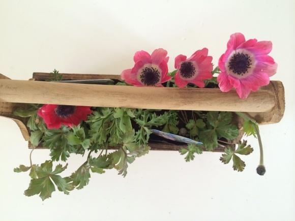 春のお花も入荷しました(^^)_c0325871_09102170.jpg