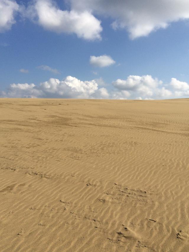砂丘の果てに見えるもの ― 鳥取砂丘_e0168781_284437.jpg