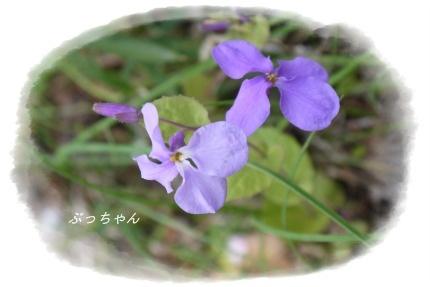 f0353990_14002080.jpg
