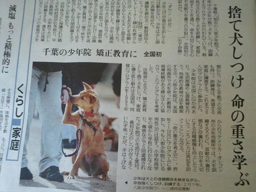捨て犬しつけ 命の重さ学ぶ_f0242002_11185128.jpg