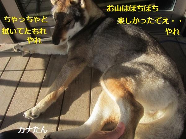 f0143123_910463.jpg