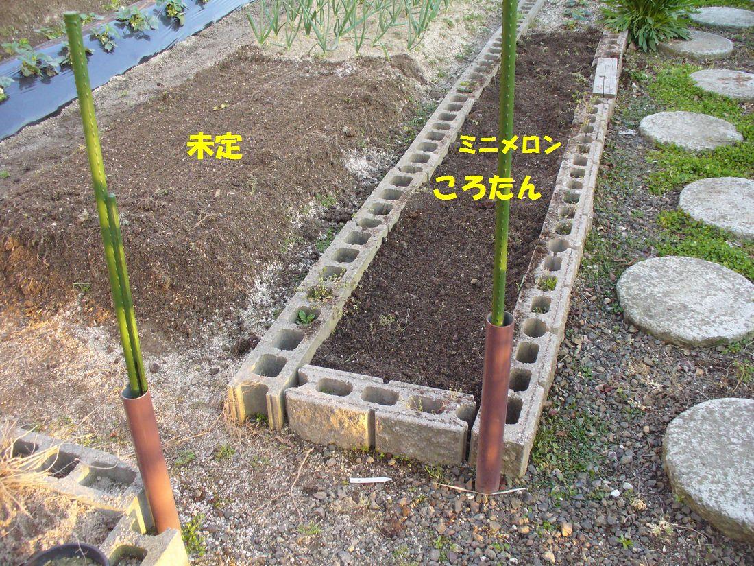 f0346527_22235029.jpg