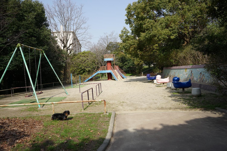 ミミちゃんと八坂神社と 良いもの_b0069128_9551550.jpg