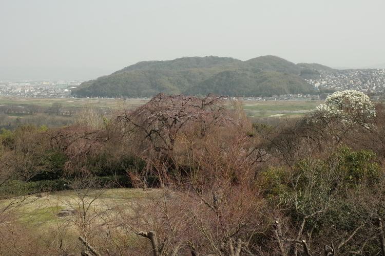 大山崎山荘美術館。_f0281446_21075270.jpg
