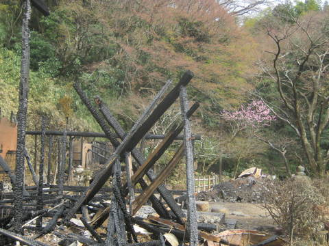 今後については神奈川県と4月早々に協議:北鎌倉・明月荘全焼_c0014967_2358476.jpg