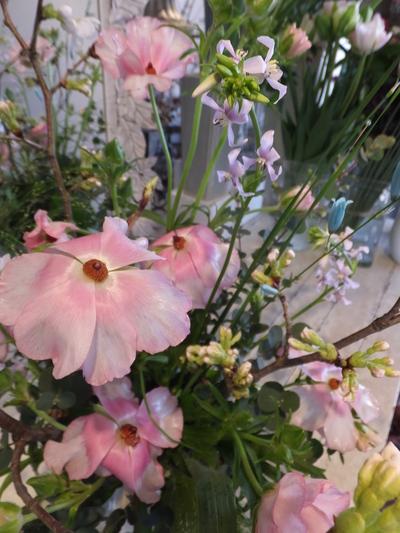 オークリーフ花の教室(山田さんの作品)_f0049672_18292243.jpg