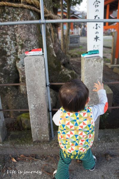 いちご狩り_e0298288_10101059.jpg
