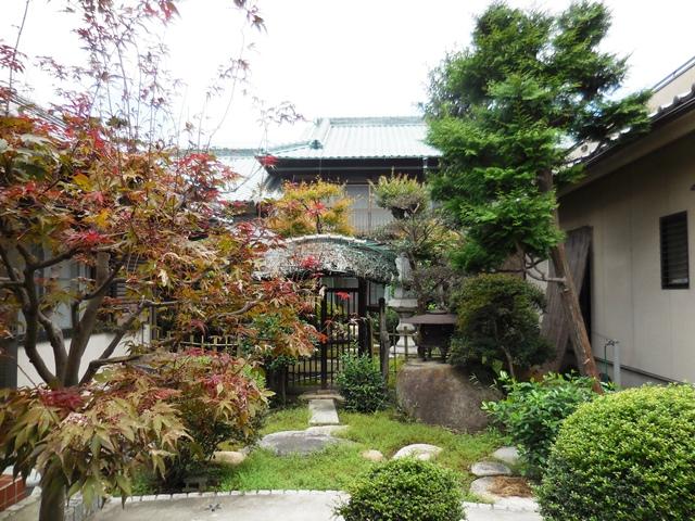 立派な家や庭ですが、、、。_d0251191_9101662.jpg