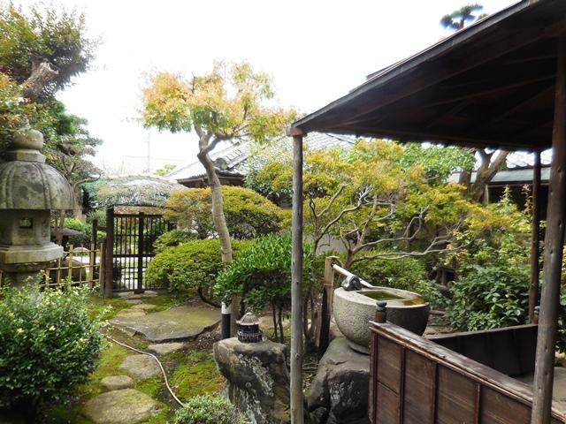 立派な家や庭ですが、、、。_d0251191_9102496.jpg