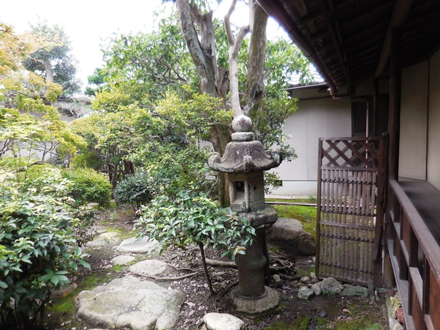 立派な家や庭ですが、、、。_d0251191_9104285.jpg