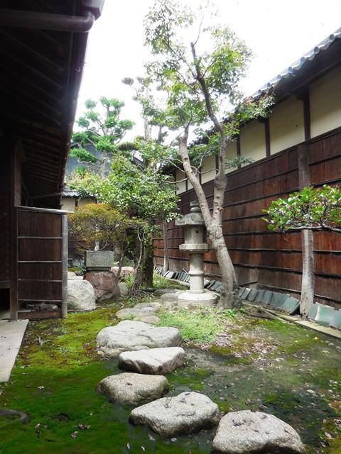 立派な家や庭ですが、、、。_d0251191_9194671.jpg