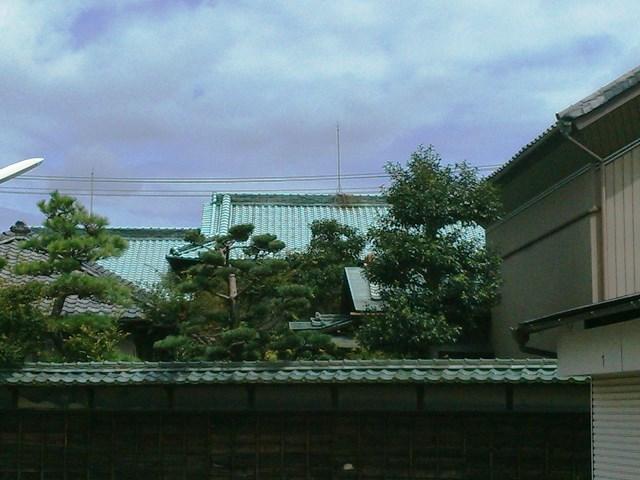 立派な家や庭ですが、、、。_d0251191_9242972.jpg