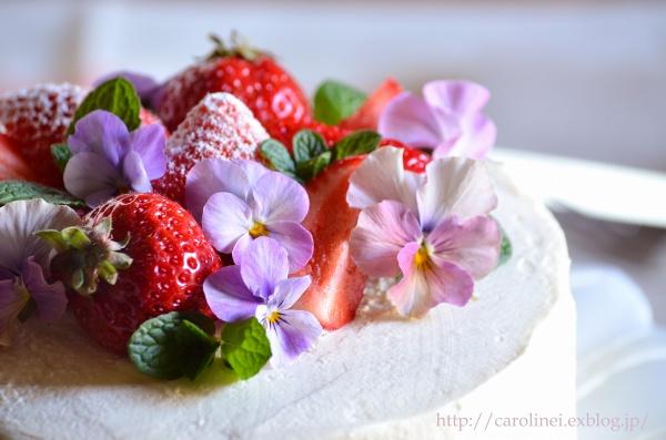 夫の誕生日に春のショートケーキ  Homemade Strawberry Sponge Cake for My Husband\'s Birthday_d0025294_22303746.jpg