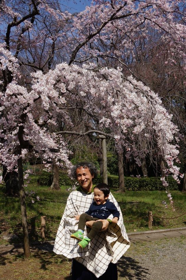 With Sakura @ Jindai Botanical Garden_f0006713_22592732.jpg