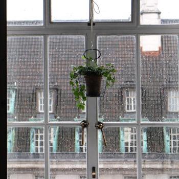 床の間のような窓_b0199526_2475439.jpg